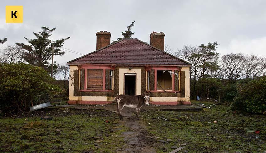 C чего начать оформление земельного участка в собственность при наличии жилого дома