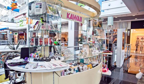 Kawaii Factory_franshiza_2