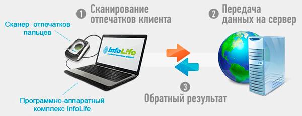 infolife_franshiza_5